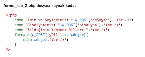 php_radio_buton_uygulamasi_php_kismi