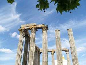 Route des vins Lisbonne - Activité insolite à Lisbonne