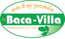 The history of Baca-Villa.