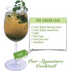 Moringa-drink-Green-Leaf-Siem-Reap-Moringa-from-Baca-Villa