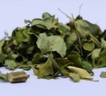Organic Moringa Tea leaves as bulk