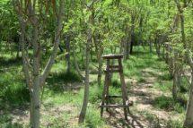 Moringa-Land-Baca-Villa-05-2015-17