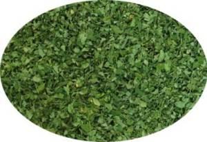 Dry-Organic-Moringa-Leaves-Baca-Villa