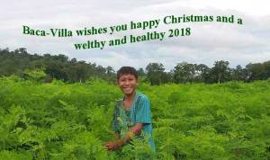 Farm-Baca-Villa-wishes-happy-christmas-and-welthy-healthy-2018