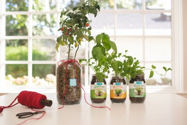 unique garden gifts gardening gifts best gifts for gardeners back to the roots mason jar gift set