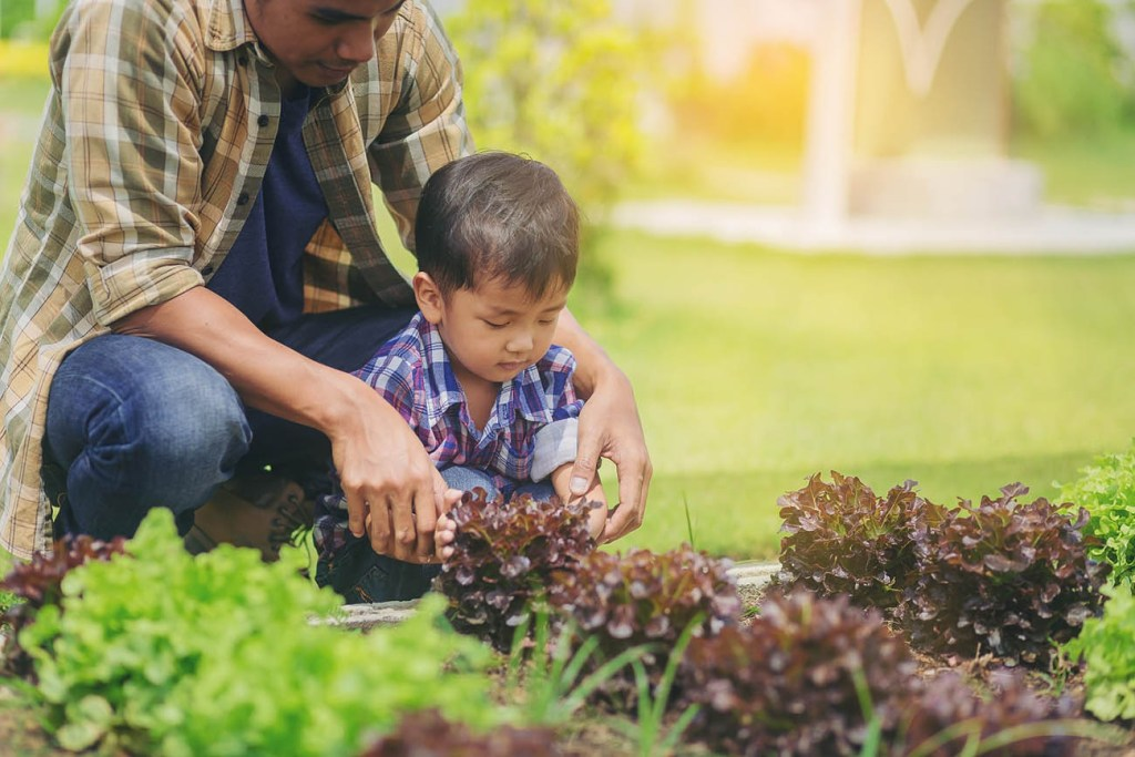 Father and son gardening outdoors