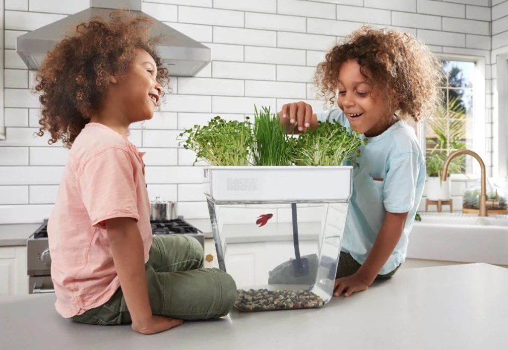 Kids with hydroponic garden