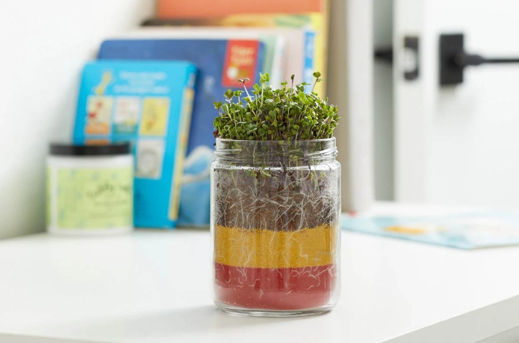 Gifts for gardeners: Back to the Roots terrarium