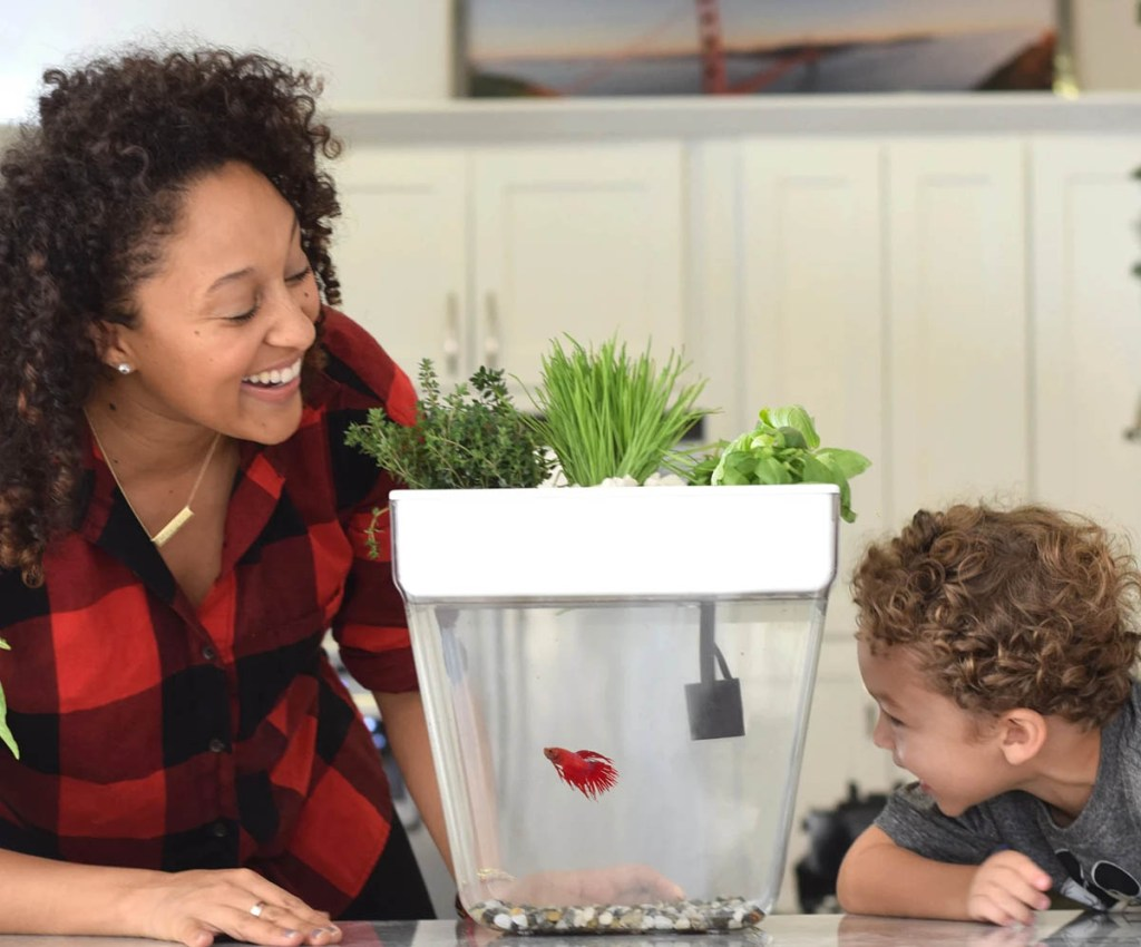 Gifts for gardeners: Back to the Roots water tank