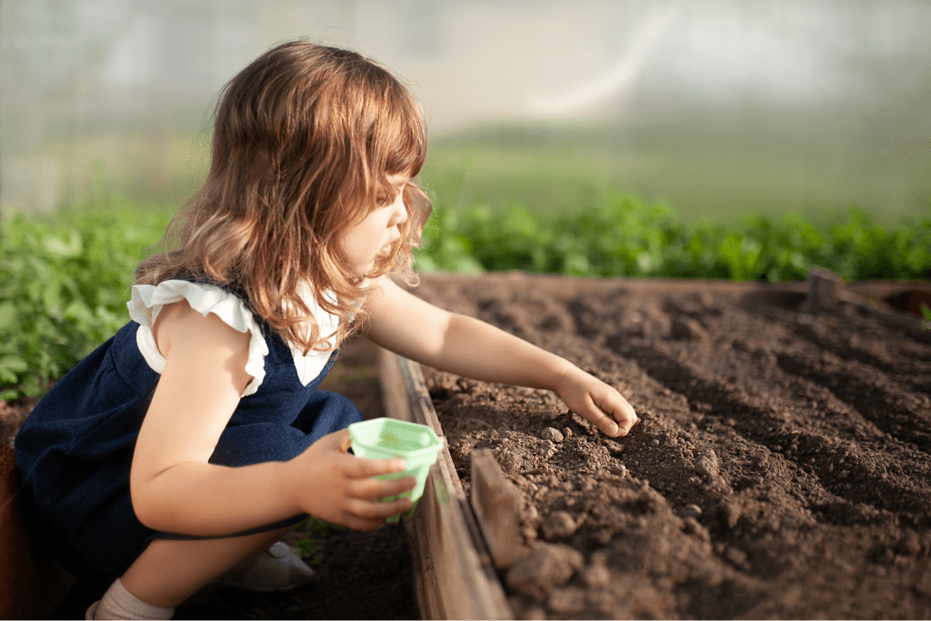 how far apart to plant cucumbers: Little girl planting cucumber seeds