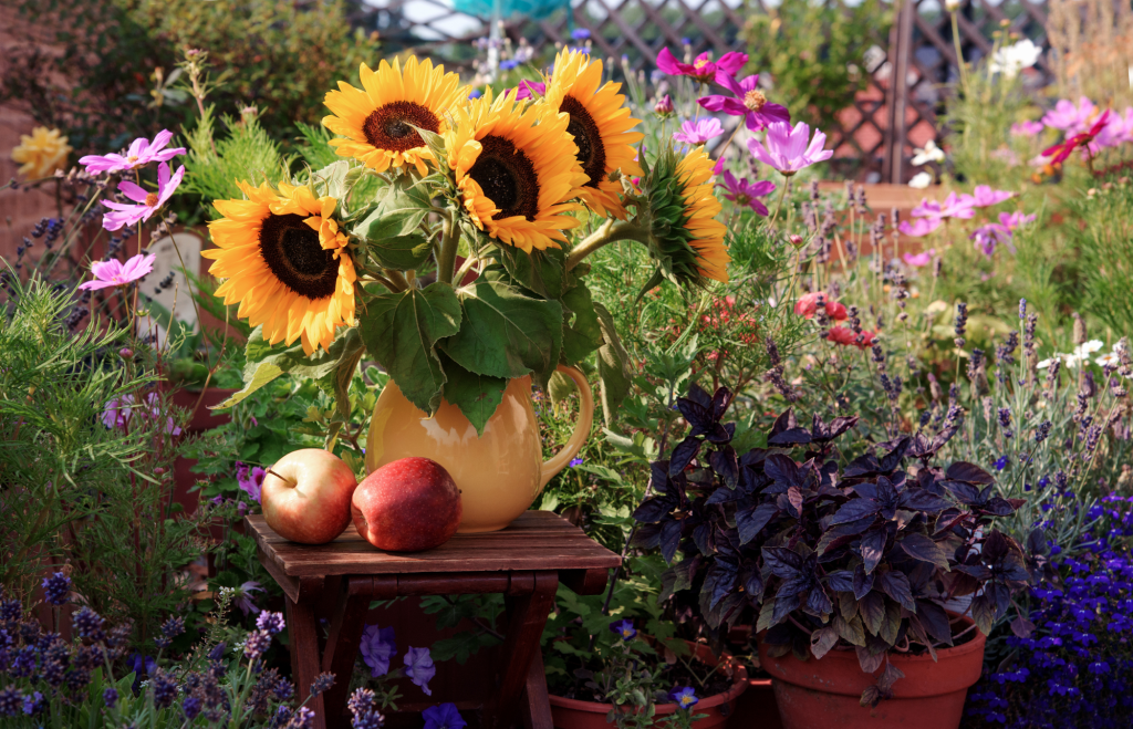 Beautiful sunflowers with different kinds of flower in a garden