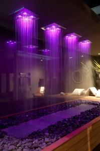 pvt wellness purple_resize