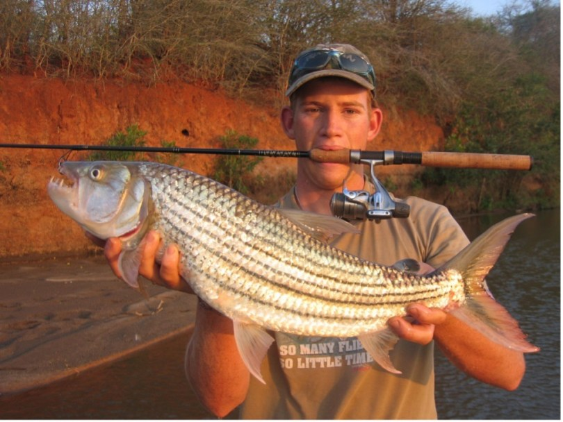 An angler with a tiger fish