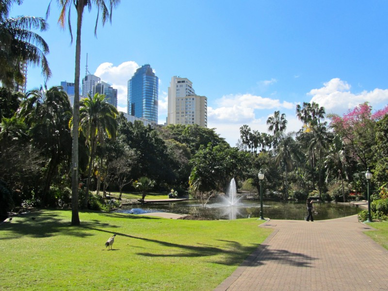 A Park in Brisbane