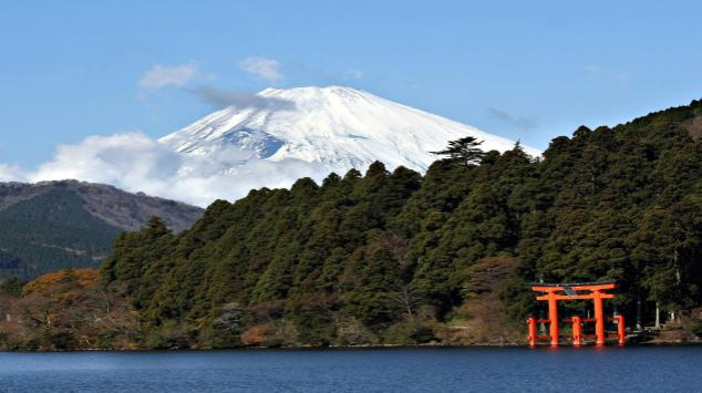 a favorite for japan's natural wonders are the many forests that sprawl the country