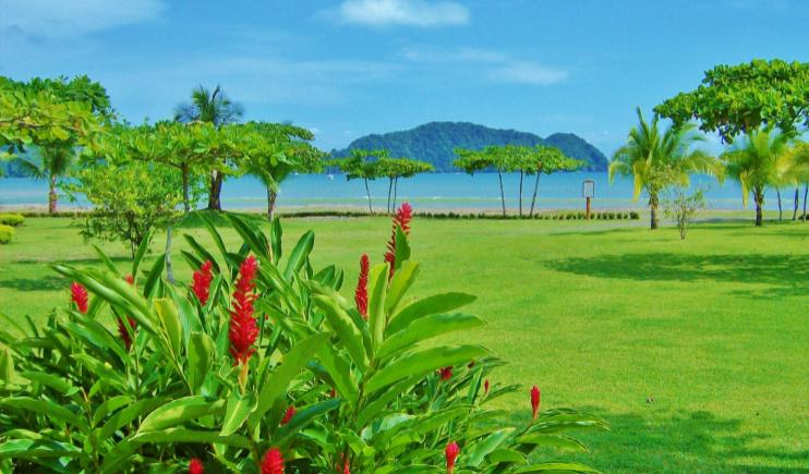 The Lush Greenery of Costa Rica- Happiest Places in the World