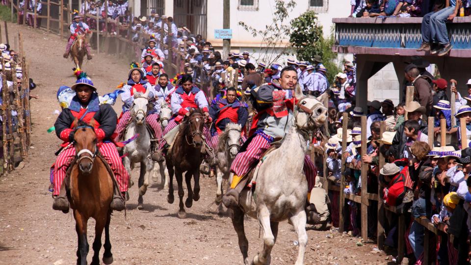 Horses during Todos Santos, Guatemala