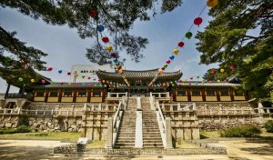 Explore South Korea: Our Tips For A Great Adventure
