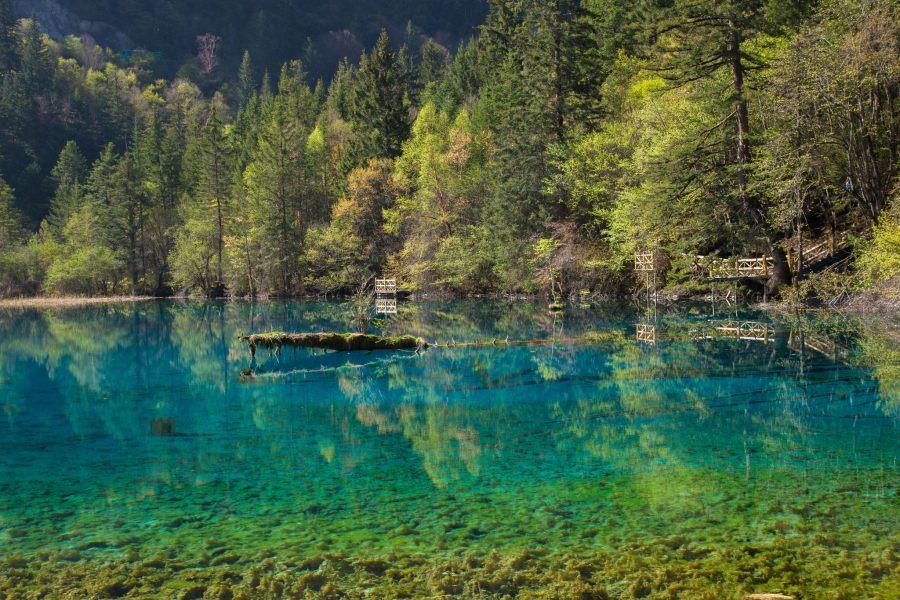 A clear blue and green lake in the Jiuzhaigou National Park, Sichuan Province, China