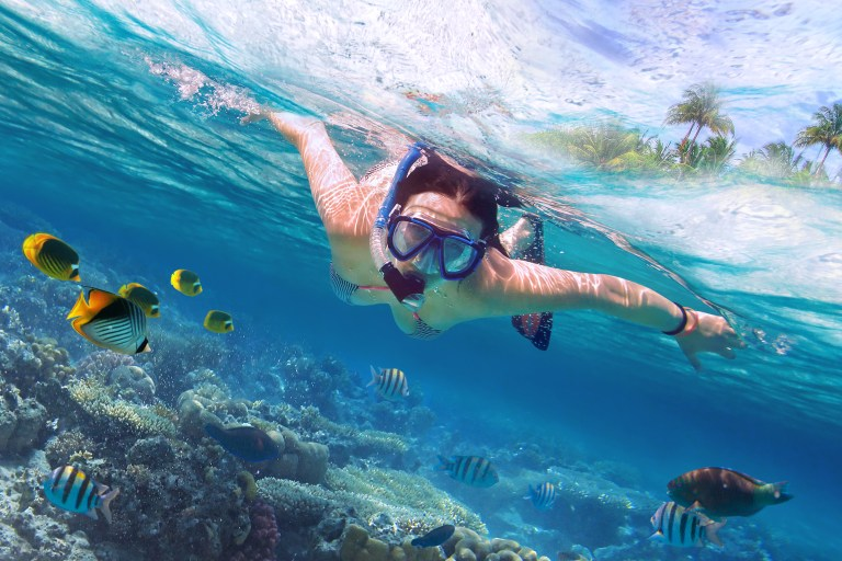 A woman snorkelling above coral and fish on tour in Koh Lipe Thailand