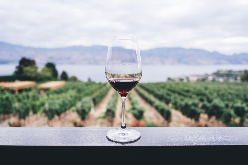 Best 5 Wineries You Must Visit Once