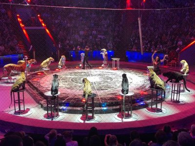 1. Moscow State Circus