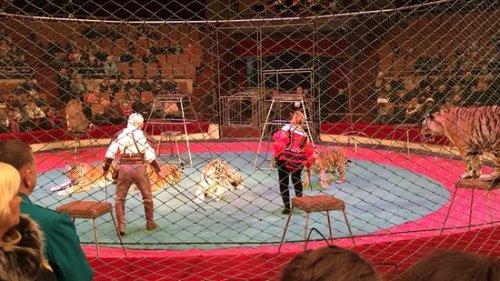 3. Kharkiv State Circus