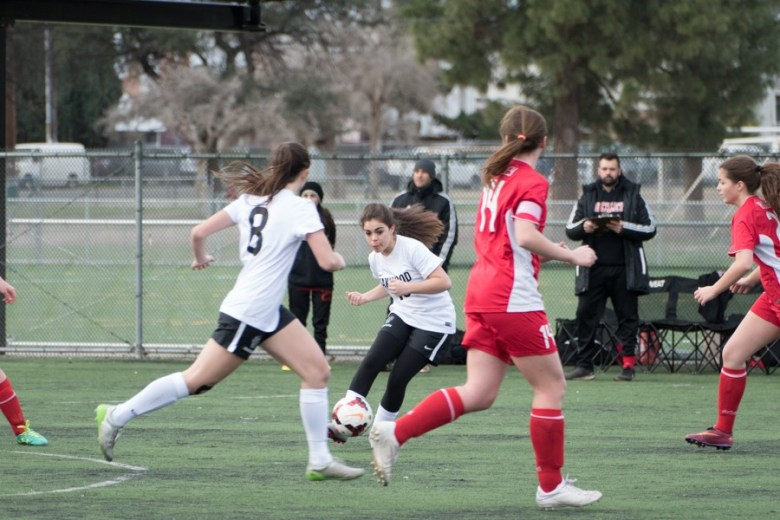 Girls soccer participation rates 2019