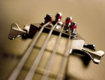 Passive Progressive - Simple Bass Exercises That Improve Your Playing