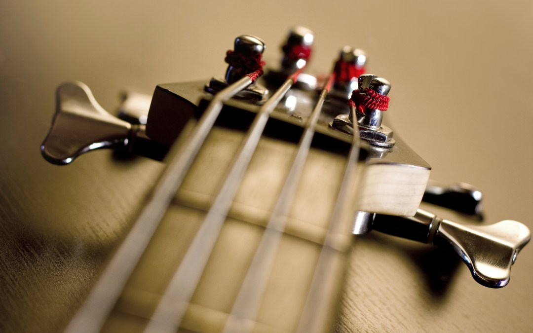 Passive Progressive – Simple Bass Exercises That Improve Your Playing