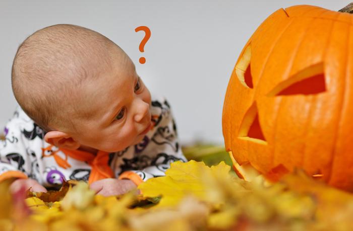 Come Intagliare La Zucca Di Halloween Emangiare La Polpa