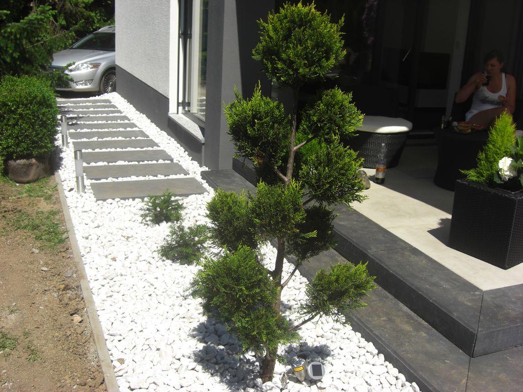 Garten  Balkonarrangements  Fragen Bilder Pflanz und