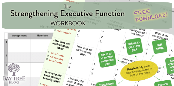 The Strengthening Executive Function Workbook (BayTreeBlog.com)