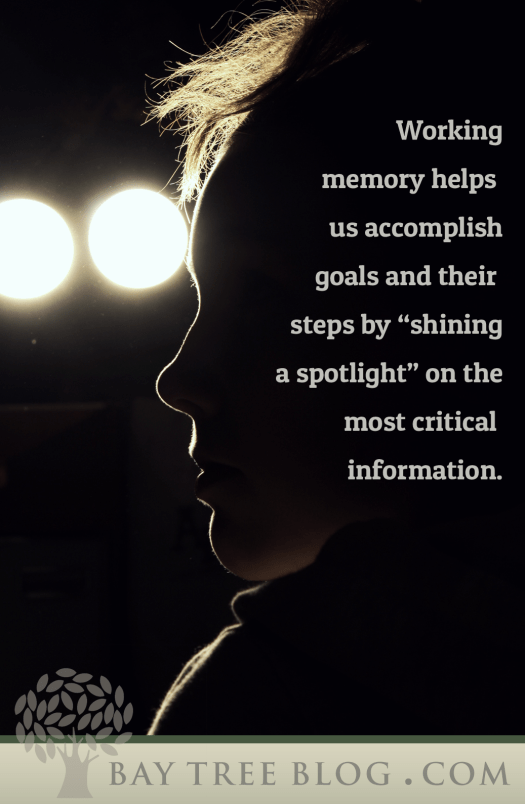 "Working memory helps us accomplish goals and their steps by ""shining a spotlight"" on the most critical information. (BayTreeBlog.com)"