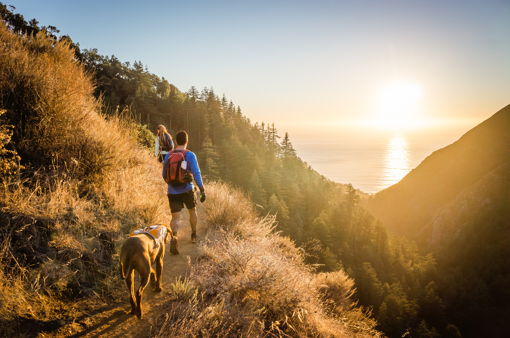 7 Hiking Tips to Beat the Heat this Summer  Point of Blue