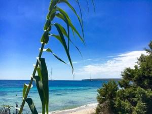 #Formentrera #Beach #Beachrestaurant