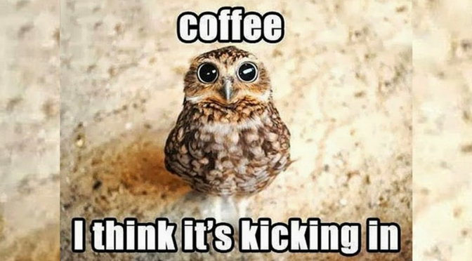 Coffee 1?resize=672%2C372&ssl=1 10 hilarious coffee memes every coffee addict relates to