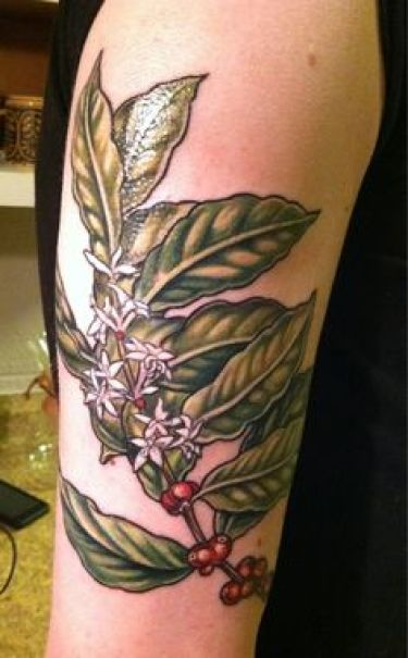 coffee cherry tattoo