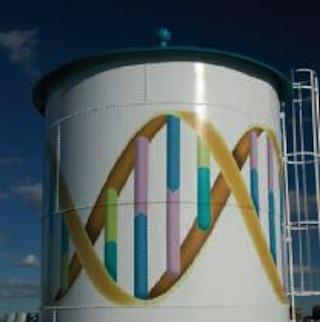 New Novartis tower