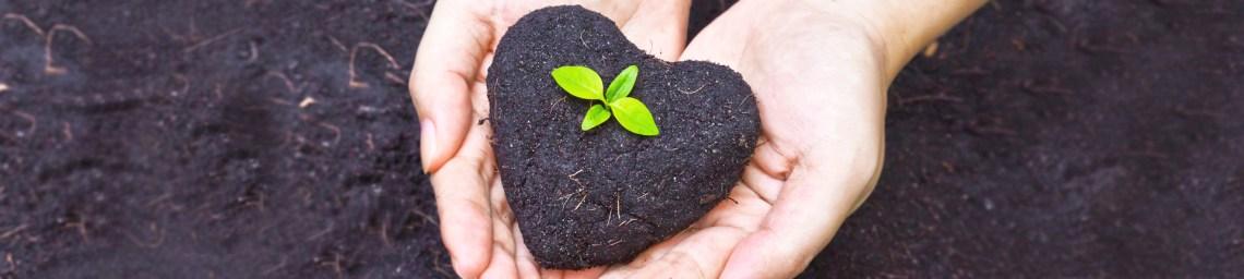 Reutilizar coisas em casa e proteger o meio ambiente