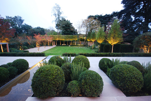 Topiary Garden Ideas for Landscaping