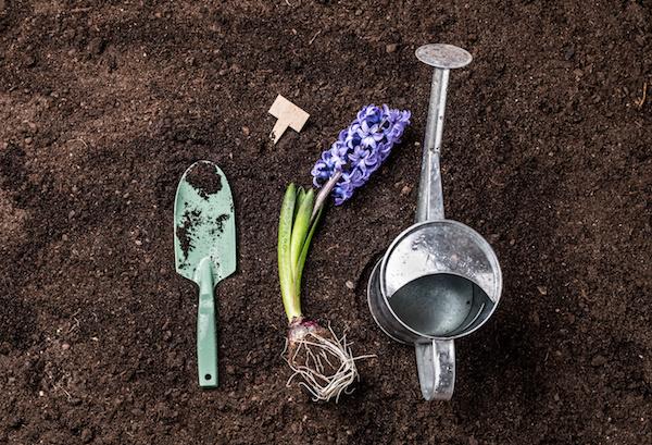 Your Spring Arrival Gardening Checklist