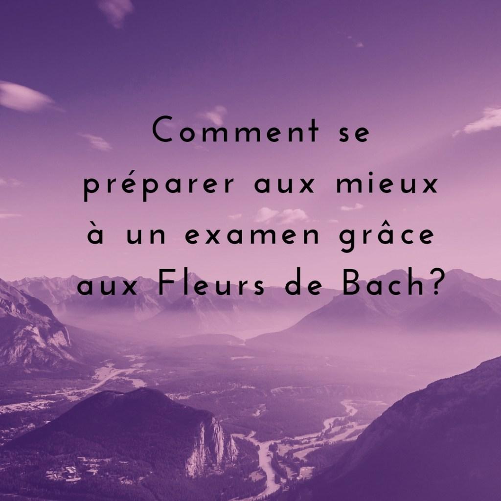 Les fleurs de Bach et les examens