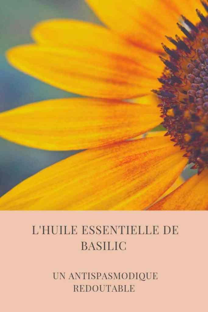 L'huile essentielle de basilic antispasmodique redoutable