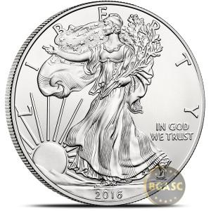 Silver Eagle Image