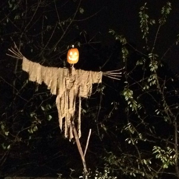 #Halloween has come! #Scarecrow - from Instagram