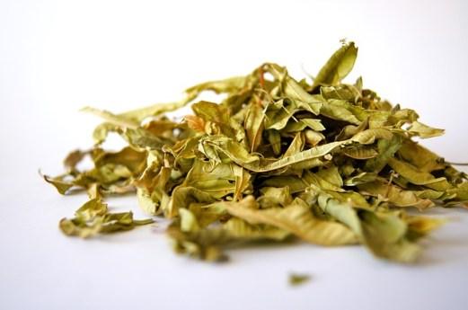 erbe essiccate2