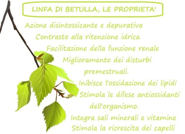 LINFA DI BETULLA, LE PROPRIETà BIMBONATURALE