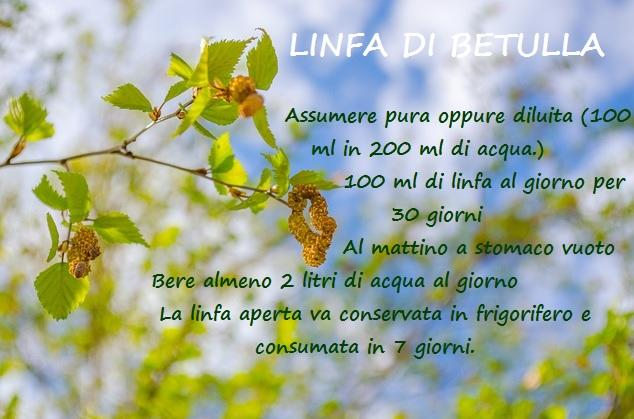 LINFA DI BETULLA, usi BIMBONATURALE
