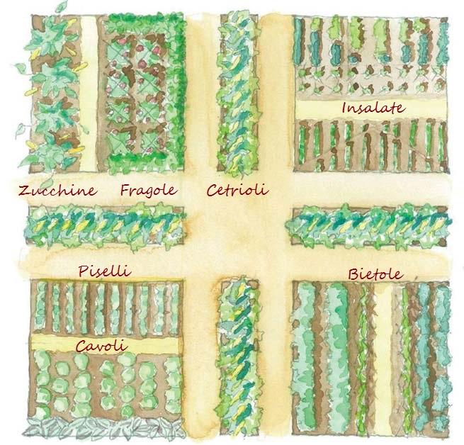 Fare l orto con i bambini for Disegnare progetti